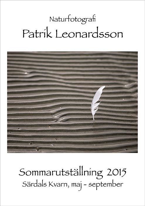 Patrik_Leonardsson_Plansch489